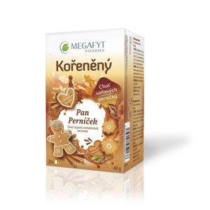 MEGAFYT Kořeněný pan Perníček 20 x 2 g