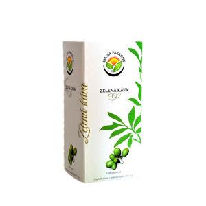 SALVIA PARADISE Zelená káva CGA n. s. 20 x 5 g